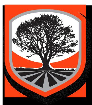 MT Vernon Tree Service Company
